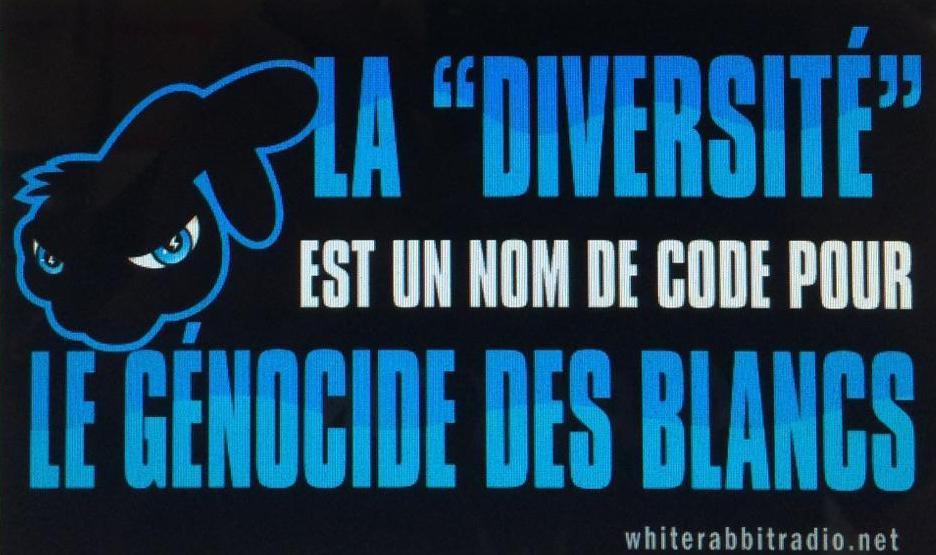 FrenchDiversity